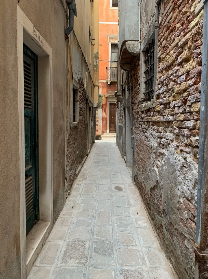 Streets of Venice in Daylight